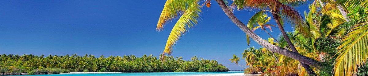 cook-islands-beach-palm-trees-3998261.jpg